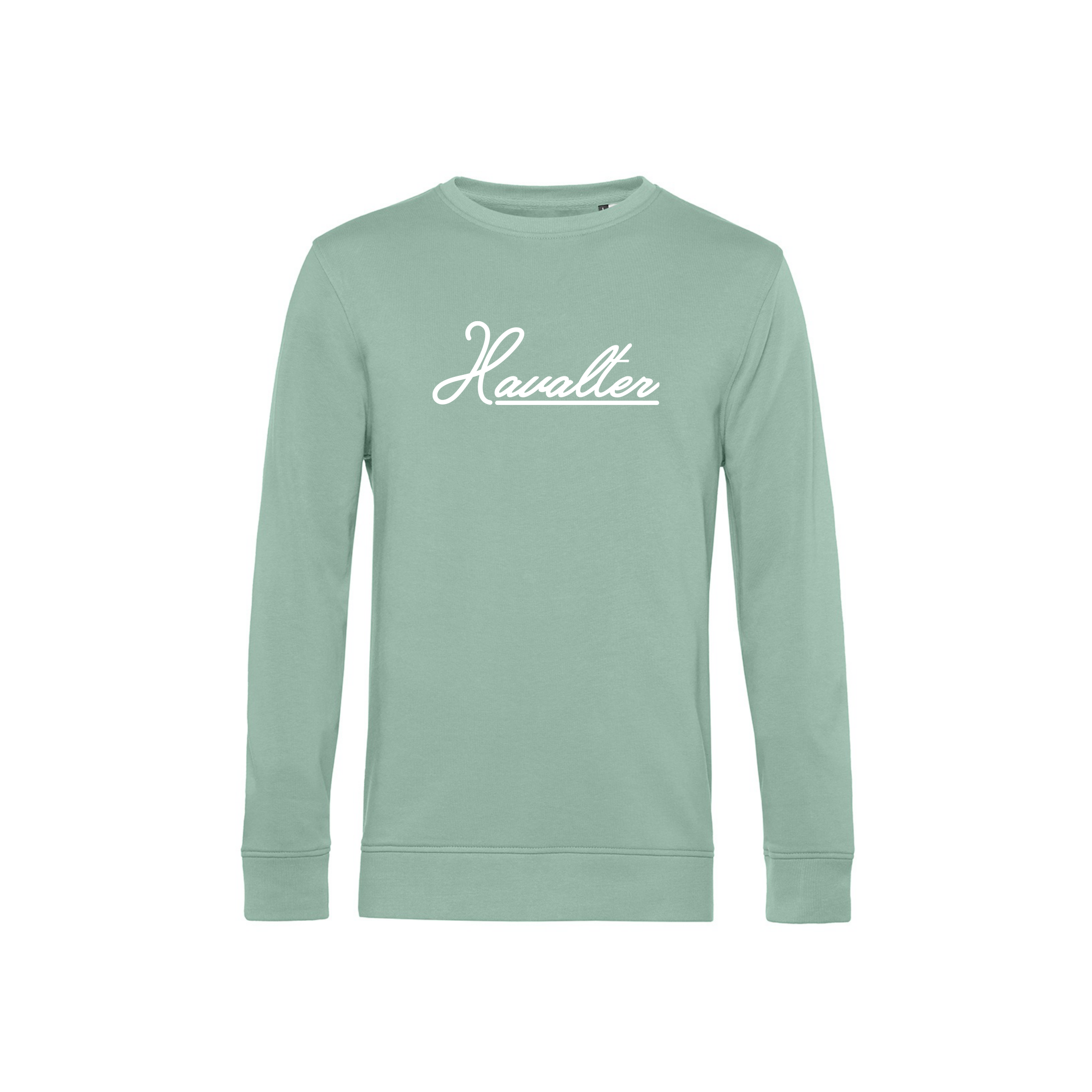 Havalter Sweater Mint Basic Logo, Unisex