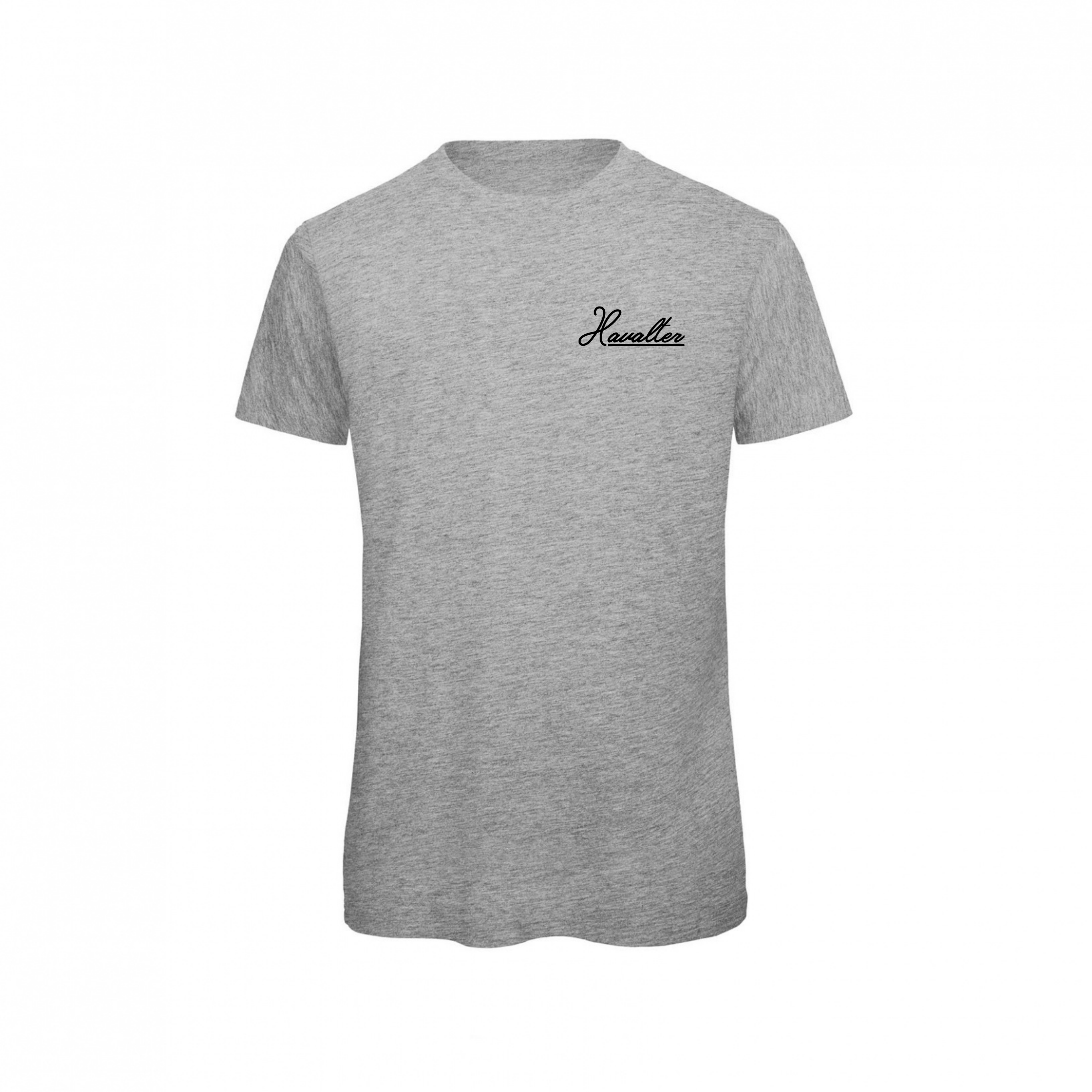 HAVALTER BASIC GREY SMALL LOGO,MEN
